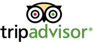 TripAdvisor for business